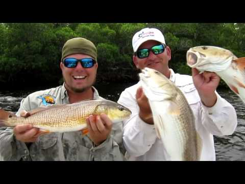 Sanibel Fishing Guide 239.246.3579   Anglers Choice Outfitters