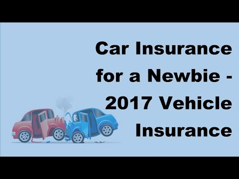 Car Insurance for a Newbie - 2017 Vehicle Insurance Policy