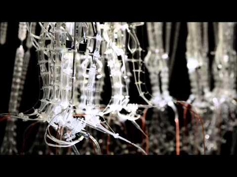 PechaKucha - Epiphyte Chamber by Philip Beesley