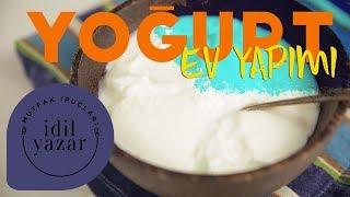 Ev Yapımı Yoğurt Nasıl Yapılır   Mutfak İpuçları