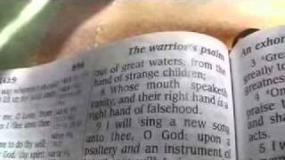 Psalm 144 King James Holy Bible