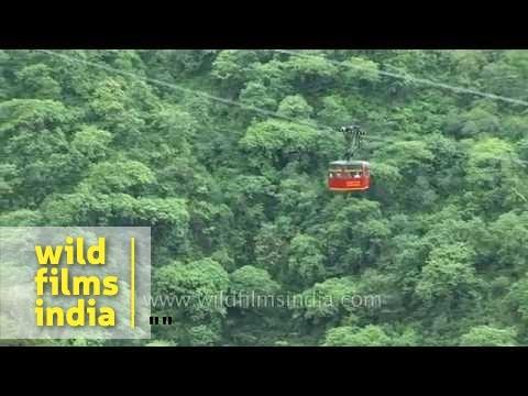 Ropeway Towards Mountain Top: Himachal Pradesh