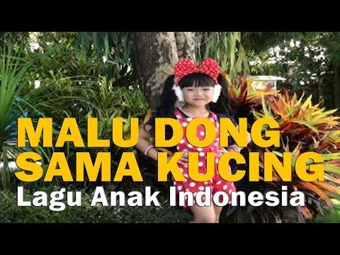 MALU DONG SAMA KUCING - Lagu Anak Indonesia 🔥 TERBARU ● Full HD
