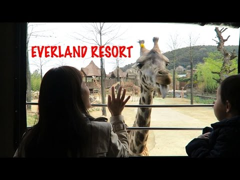 EVERLAND RESORT SEOUL