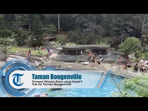 tempat-wisata-alam-yang-sejuk,-yuk-ke-taman-bougenville
