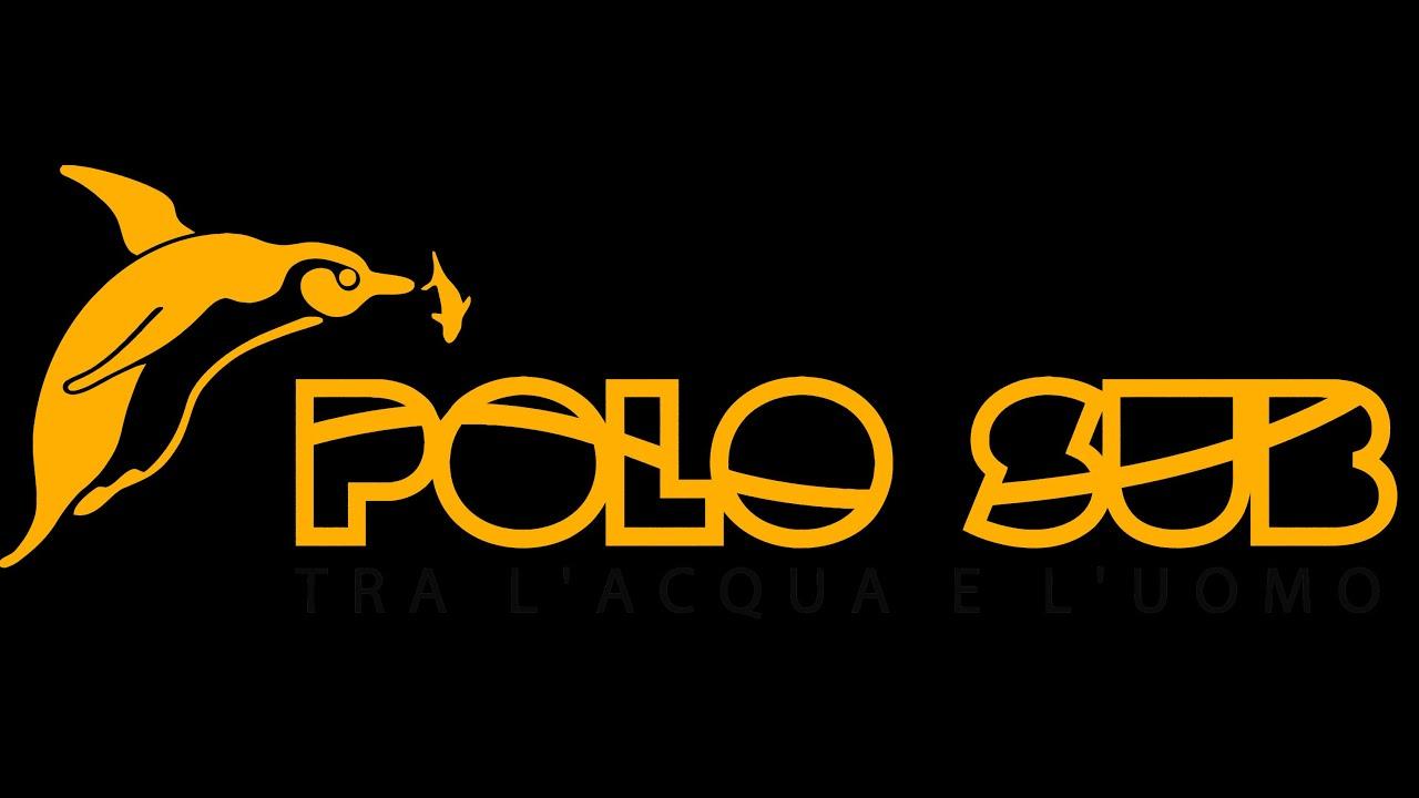 Polosub España
