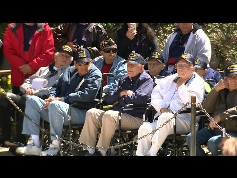 Web Extra: Touching Tribute To Local Veterans During Honor Flight South Florida