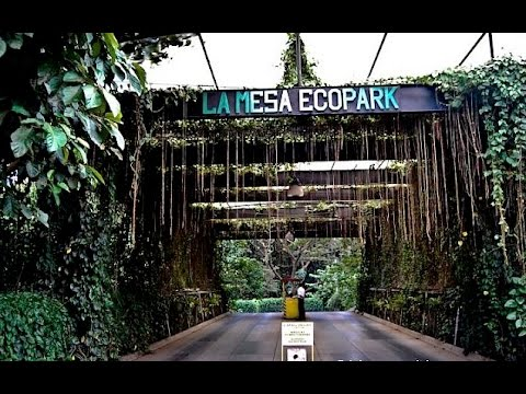 Best resort in manila la mesa ecopark entrance youtube - La mesa eco park swimming pool photos ...