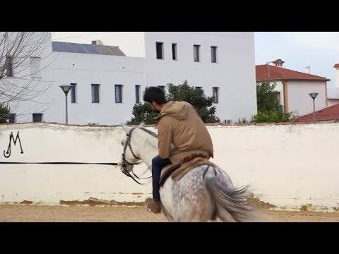 Uma aventura de António Raminhos na Golegã | Missão: 100% Português | RTP