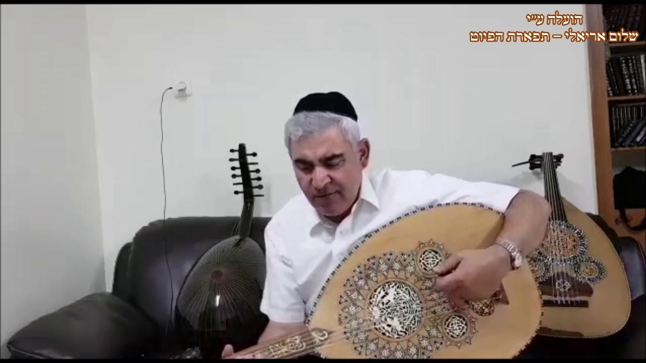 ישא ברכה ותהילה המוסיקאי משה חבושה