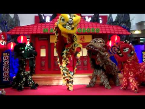 *Lion Dance Attraction* Atraksi Keren Tari Barongsai Imlek 2016