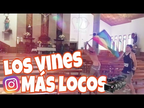 LOS MEJORES VINES DE MDPOLLO