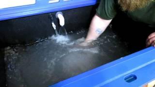 How to Setup a Marine Ecological Habitats Lobster Box Tank