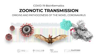 COVID-19: Viral Genomes and Zoonotic Spillover