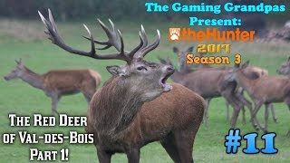 The Red Deer of Val-des-Bois - Part 1! - theHunter (2017)