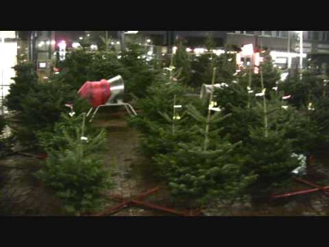 weihnachtsbaum verkauf abends in hildesheim 2009. Black Bedroom Furniture Sets. Home Design Ideas