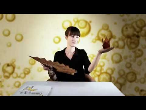 Austria  Almond oil organic-奧地利有機杏仁油 -台灣彼歐極品_Bio Premium