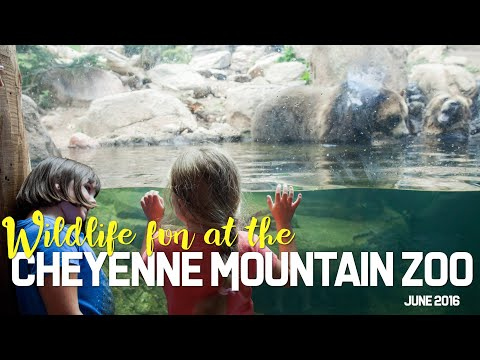 Our Colorado Vacation: Cheyenne Mountain Zoo