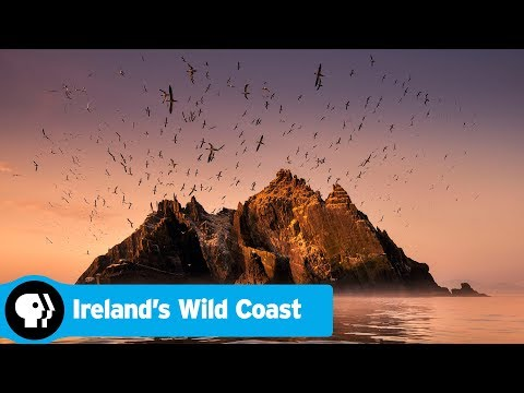 IRELAND'S WILD COAST | Official Trailer | PBS