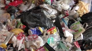 Projeto para reduzir uso de sacolas plásticas tramita na Assembleia