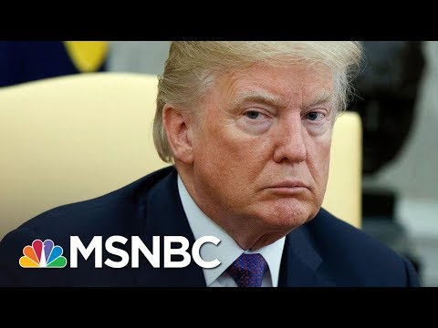 "Elizabeth Holtzman On Michael Flynn's Plea Deal: ""Donald Trump Is In The Red Zone Now"" 