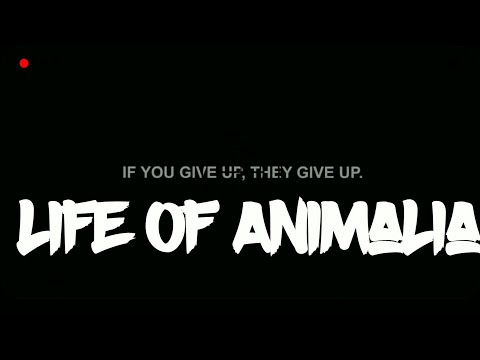 animalia the world of animals trailer mp4