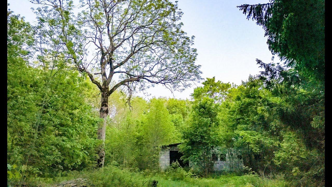 Mahajäetud maja metsas