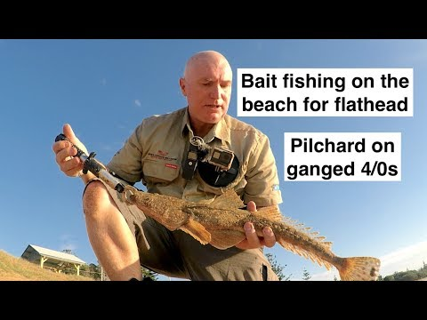How To Catch FLATHEAD Off The BEACH With BAIT