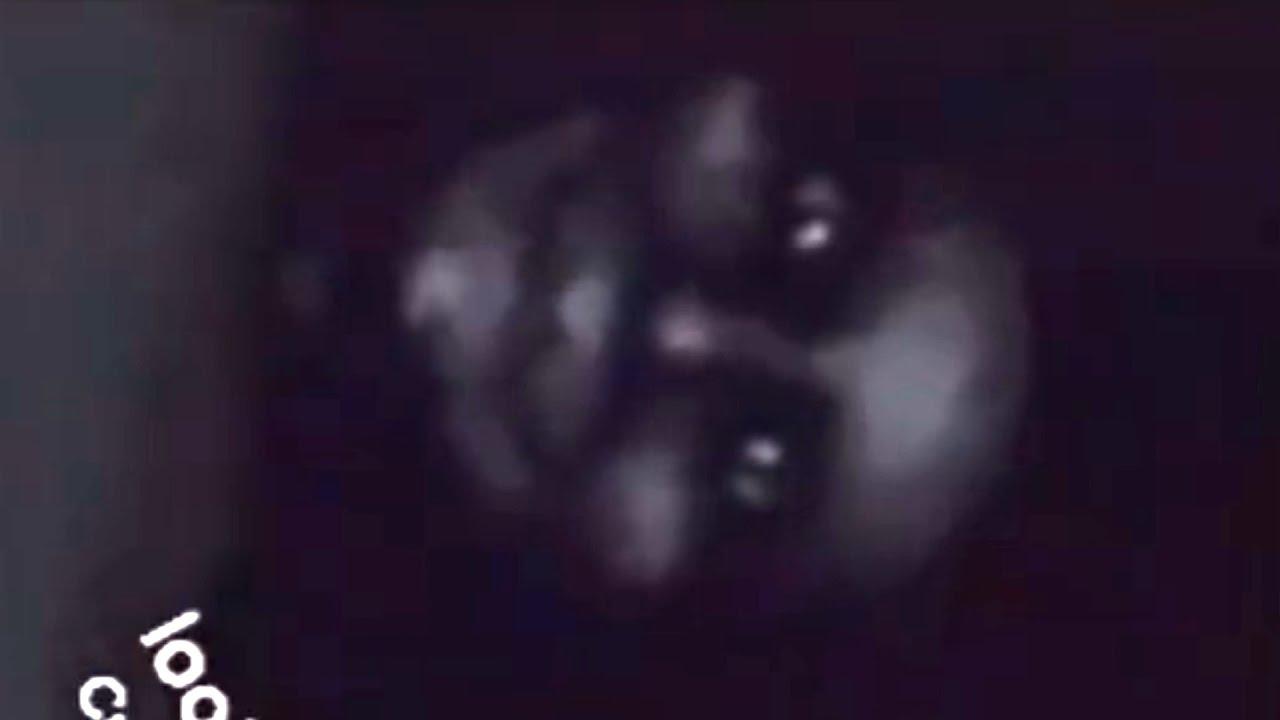 Hardboiledtoe - The Girl With the Demon Dog