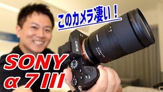 とんでもないカメラを購入してしまった!【SONY/α7Ⅲ】