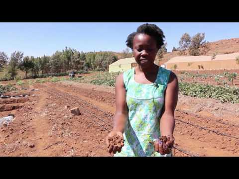 Nourishing the world, organically | The story of Sylvia Kuria, organic farmer in Kenya