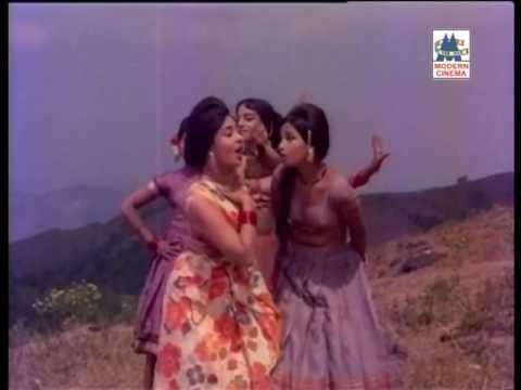 Vanna Poo Seali Katti Song Sangamam Geminiganesan Venniradai Nirmala