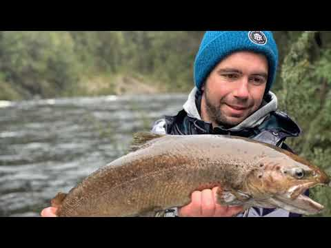 West Coast Tasmania Trout Fishing
