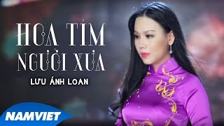 Hoa Tím Người Xưa - Lưu Ánh Loan (MV OFFICIAL)