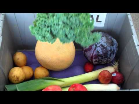 Seattle's Local Fresh Harvest Box - Sept. 10th
