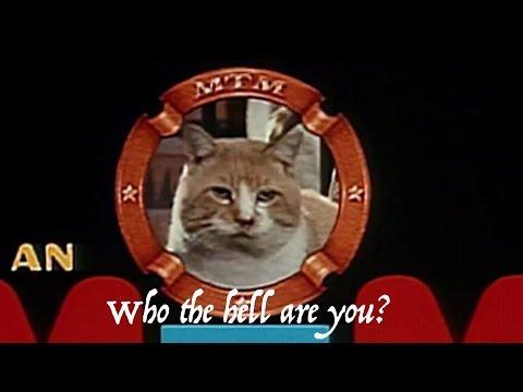MTM Enterprises/20th Television (1976/2013)