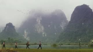 Sker buffalo scene\Kong: Skull Island [HD]