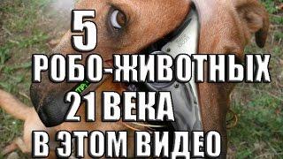 ЖИВОТНЫЕ БУДУЩЕГО  - 21 ВЕКА