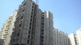 Project video of Tulsi Kamal