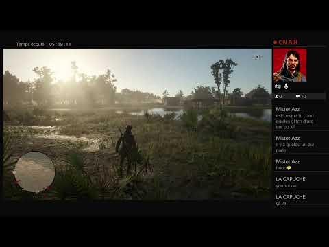 Diffusion PS4 En Direct Red Dead Rédemption Online 2  Fr Dylanpirate