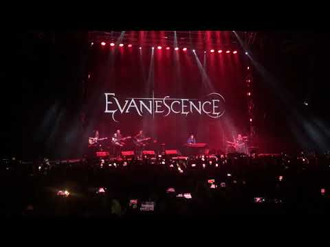 Evanescence - Bring Me To Life, Live In Voronezh 2019
