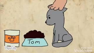 Том и жир