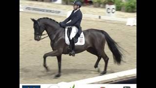 Sam Verheyden, notre cavalier de dressage amateur termine 6ème du Prix Saint Georges à Malines