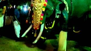 Gajaraja rathnam Thrikkadavoor Sivaraju