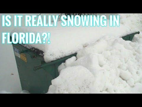 DUMPSTER DIVING LIVE VLOG #2: SNOW IN FLORIDA?!