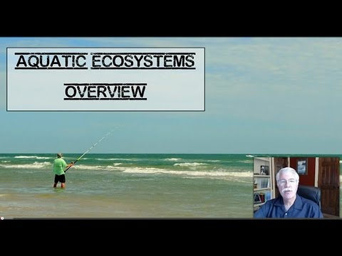 Aquatic Ecosystems - L6.1