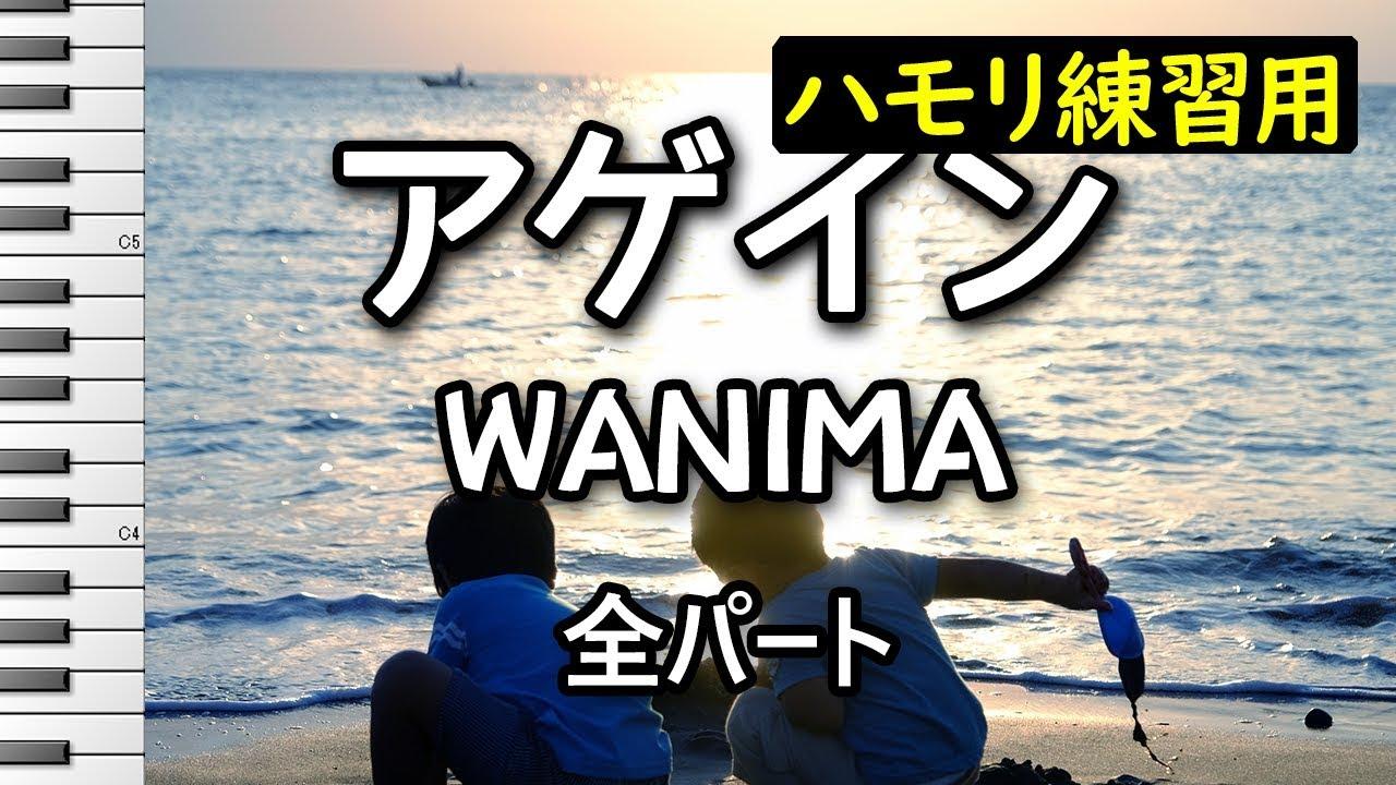 wanima アゲイン ドラマ