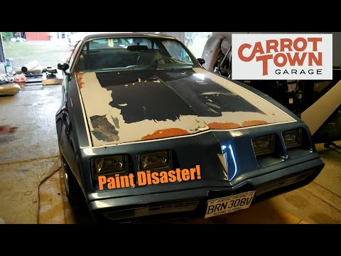 Total Disaster Removing The Viny Stripes On Our 1979 Pontiac Firebird, Carrot Town Garage