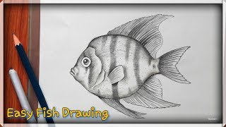 How to draw a fish | easy pencil sketch for beginners