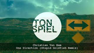 christian van ham one direction stupid goldfish remix